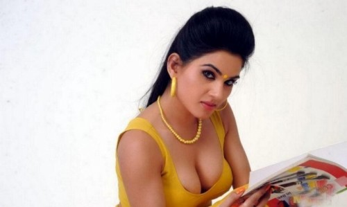 kavya-singh-hot-photos_149137694200.jpg