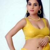 kavya-singh-hot-photos_1491376942160
