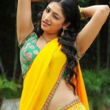 south-indian-actress-spicy-beauties_1455785979130
