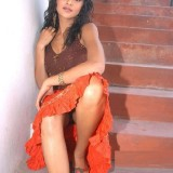 south-indian-actress-spicy-beauties_1455785979170