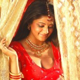 south-indian-actress-spicy-beauties_145578613690