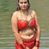 telugu-actress-hot-pics_1493186635110